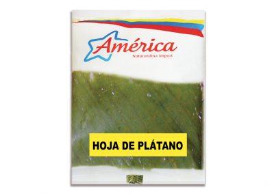 Hojas de Plátano