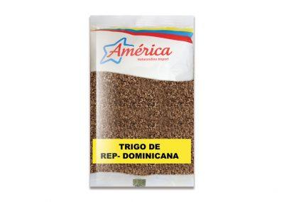 Trigo Dominicano